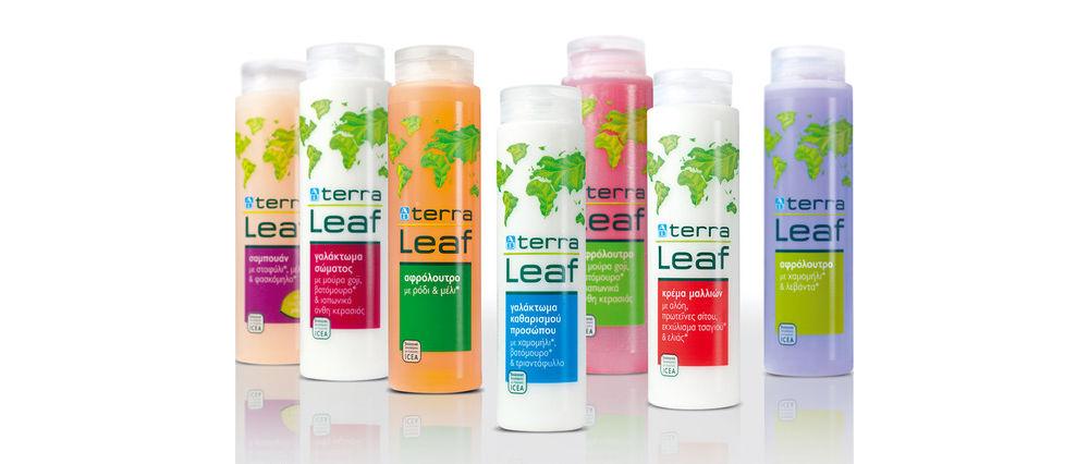 Terra Leaf 4